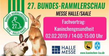 Plakat zum Fachvortrag zur Kaninchengesundheit